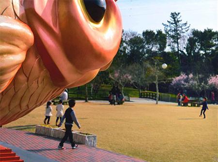 金魚と鯉の郷広場